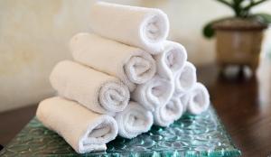 Spa Fitness Gym Towel Rental